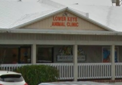 vet in the florida keys